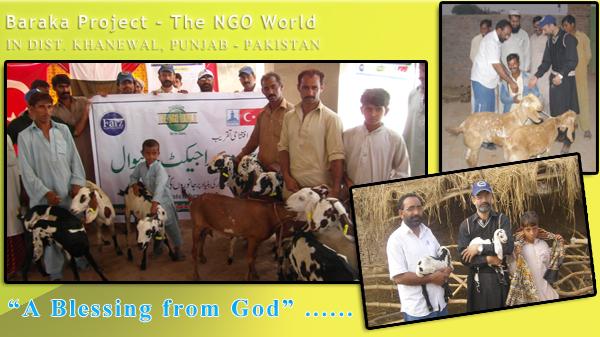 baraka- The NGO World Foundation