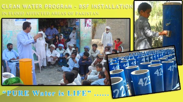 bsf- The NGO World Foundation