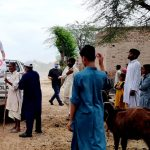 200 Poor Families of Jhang Recivied Food Packs Post 3- The NGO World Foundation